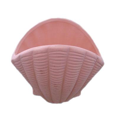 Terracotta Sea Shell Flower Pot